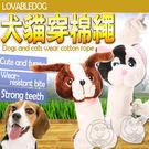 【zoo寵物商城】LOVAB》狗臉貓臉寵物玩具 (陪伴寵物無聊時光)