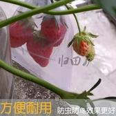 防鳥網桃子西紅柿草莓枇杷番石榴無花果套袋防鳥防蟲袋子水果網袋  【快速出貨】