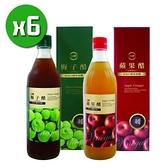 【南紡購物中心】【台糖】蘋果醋x6瓶+梅子醋x6瓶(600ml/瓶)