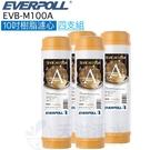 【EVERPOLL】EVB-M100A 樹脂濾芯 濾心【四入】【10吋標準規格濾心】【M100A】【道爾樹脂】