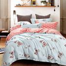 【Jenny Silk名床】好心情.100%天絲.超柔觸感.標準雙人鋪棉床包組兩用鋪棉被套全套
