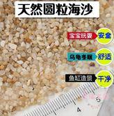天然海沙魚缸底沙水族造景沙子小石頭貝殼沙鋪面沙河沙龜沙玩具沙 全館85折