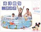 麗嬰兒童玩具館~親親jilong-海洋動物三環嬰兒游泳池/大海洋泳池-加高加大充氣球池