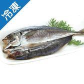 【嚴選】竹莢魚一夜干210-250G/片【愛買冷凍】