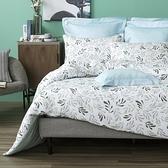 HOLA 牧萁純棉床包兩用被組 雙人