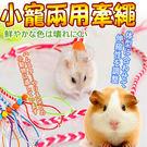 【培菓平價寵物網】dyy》寵物鼠|松鼠|小動物牽繩140cm(顏色隨機出貨)
