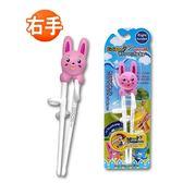 韓國 Edison 粉色小兔兒童學習筷(右手)