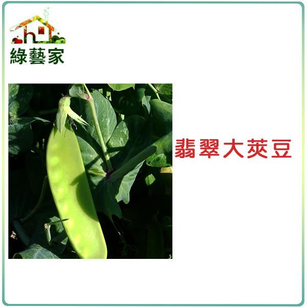 【綠藝家】大包裝E04.翡翠大莢豆(改良種)種子200克