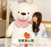 熊貓毛絨玩具可愛抱睡覺1.6抱抱熊公仔女孩布娃娃2米大熊熊送女友QM 藍嵐