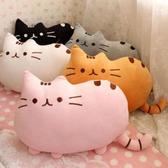 【BlueCat】彩虹迷你餅乾貓絨毛玩偶/抱枕/facebook貓/臉書貓(25cm)