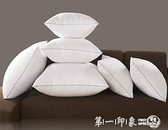 抱枕芯沙發靠墊靠枕芯40 45 50 55 60 65 70抱枕枕芯正長方形枕芯 幸福第一站