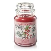 Yankee Candle 蠟燭 Sage & Berry  YCE104