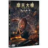 摩天大樓 (DVD)Skyscraper (DVD)