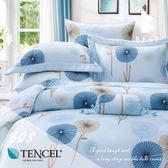 天絲床包三件組 雙人5x6.2尺 朵莉絲(藍) 100%頂級天絲 萊賽爾 附正天絲吊牌 BEST寢飾