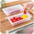 冰箱收納瀝水保鮮盒塑料食物水果冷凍收納盒密封盒【匯美優品】