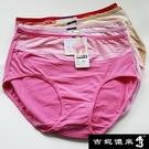 【南紡購物中心】【吉妮儂來】6件組舒適竹炭底加大尺碼條紋織帶中腰棉褲