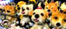 【收藏天地】台灣紀念品*可愛搖頭狗狗貓咪擺飾(附盒子)27款/ 萌犬 汽車裝飾 居家 生活