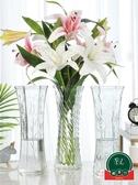 【2個裝】透明玻璃花瓶客廳插花擺件水養富貴竹百合花瓶【福喜行】