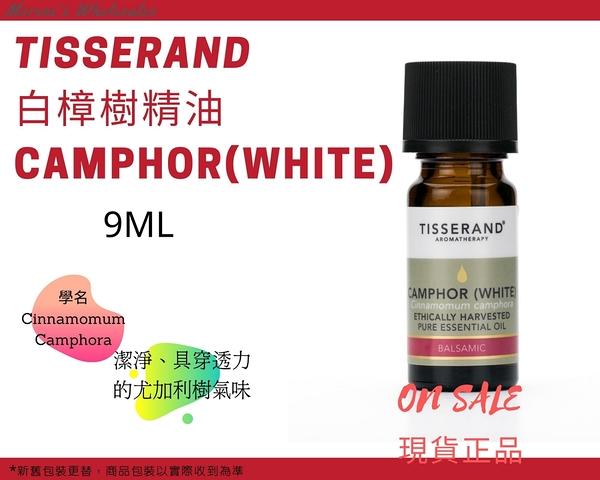 英國Tisserand 白樟樹精油 Camphor(White) Essential Oil 9ml 現貨正品 快速發貨【Morene】