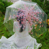 個性創意櫻花透明雨傘小清新直骨自動長柄