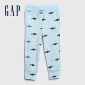 Gap男幼童 棉質舒適印花鬆緊針織褲 442430-藍灰
