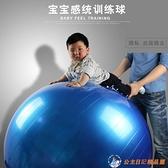 瑜伽球寶寶感統訓練兒童環保按摩球【公主日記】