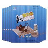 10片裝大老鼠貼超強力粘鼠板沾鼠防滅老鼠夾膠藥捕鼠神器家用