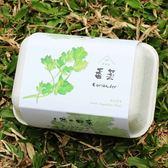【青菜笠】雞蛋環保植栽盒-香菜