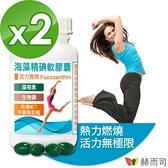 【赫而司】海藻精碘軟膠囊(60顆x2罐)含褐藻素+碘+防彈MCT中鏈脂肪酸 促進新陳代謝