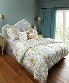 【WENTEX】Livin 天絲™加大四件式床包組