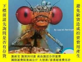二手書博民逛書店英文版罕見Incredible Insects 利害的昆蟲Y24