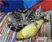 貓玩具貓薄荷逗貓貓咬牙磨牙的小貓抱枕寵物仿真貓咪博荷草魚枕頭  凱斯盾數位3C