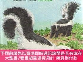 二手書博民逛書店I罕見Wonder Why Skunks Are So Smelly and Other Neat Facts A