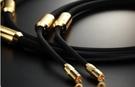 《名展影音》Telos 黃金系列 Golden Reference 訊號線 1米