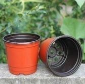 盆栽花卉 雙色花盆 育苗盆 營養缽 塑料花盆摔不壞一次性大號