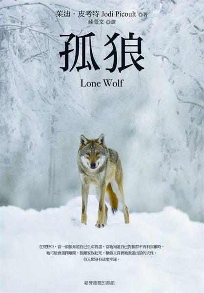 (二手書)孤狼