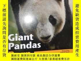 二手書博民逛書店Giant罕見Pandas: Born Survivors 英文