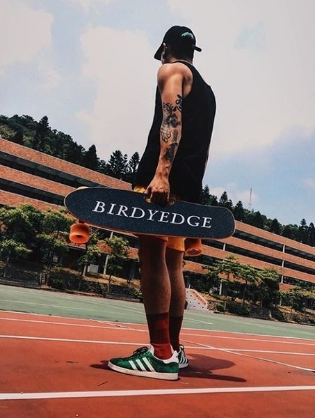 BIRDYEDGE 設計 LD01電動車 滑板  四輪車 木製 滑板 滑板車 台灣電動滑板