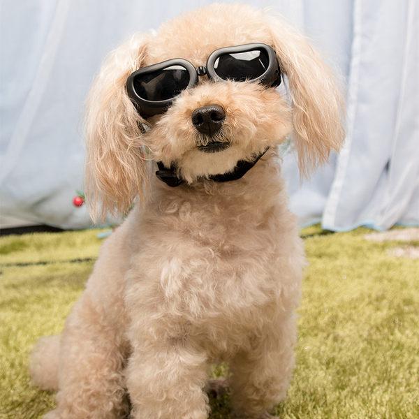狗眼鏡寵物太陽鏡擋風鏡墨鏡小型犬專用護目鏡 狗狗裝扮飾品 新年禮物大購物