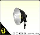 ES數位館 E27 標準燈頭 專用 27cm 外徑大型 鋁合金 燈罩