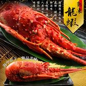 頂級熟凍大龍蝦500g±5%/隻#巴西#海中聖品#沙拉#焗烤#龍蝦鍋#熬粥