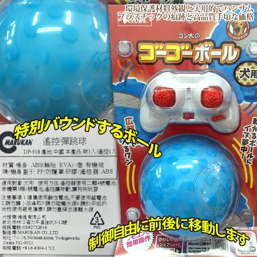 【zoo寵物商城】 日本《Marukan》CT-349/DP-918犬貓玩具遙控彈跳球