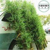 仿真假竹子室內裝飾隔斷屏風客廳玄關酒店櫥窗竹子造景加密綠植 生活樂事館