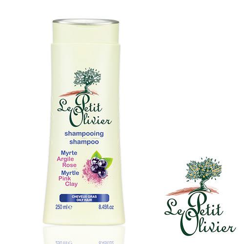 【法國小橄欖樹】天然草本洗髮精-油性髮質(250ml)