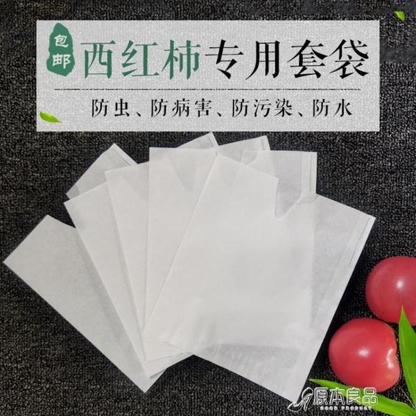 防蟲果網 套袋專用袋杏紙袋果袋保護袋臍橙柑橘防雨防蟲防鳥【快速出貨】