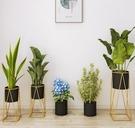 歐式簡約鐵藝花架置物架花架子室內客廳落地式綠蘿吊蘭綠植花盆架 - 風尚3C