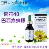 巴西來的天然蜂膠 - 菊花40無酒精巴西綠蜂膠 1瓶 30ml $500