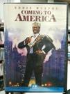 挖寶二手片-P12-185-正版DVD-電影【來去美國】-經典片 艾迪墨菲