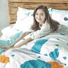 床包兩用被組 / 雙人特大【遇見朵朵藍】含兩件枕套,鋪棉兩用被套,100%精梳棉,戀家小舖台灣製