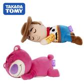 【日本正版】玩具總動員 睡覺好朋友 絨毛玩偶 娃娃 胡迪 熊抱哥 迪士尼 皮克斯 225253 225260